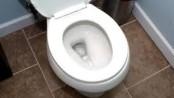 A Warm Toilet
