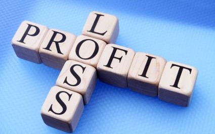 Format of the Profit and Loss Statement for Service Related ...