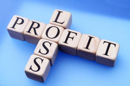 Format of the Profit and Loss Statement for Service Related Businesses