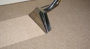 Carpet Cleaning Service – Margins and Expenses