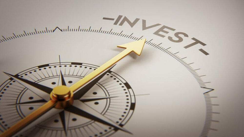 Value Investing Investment Fund